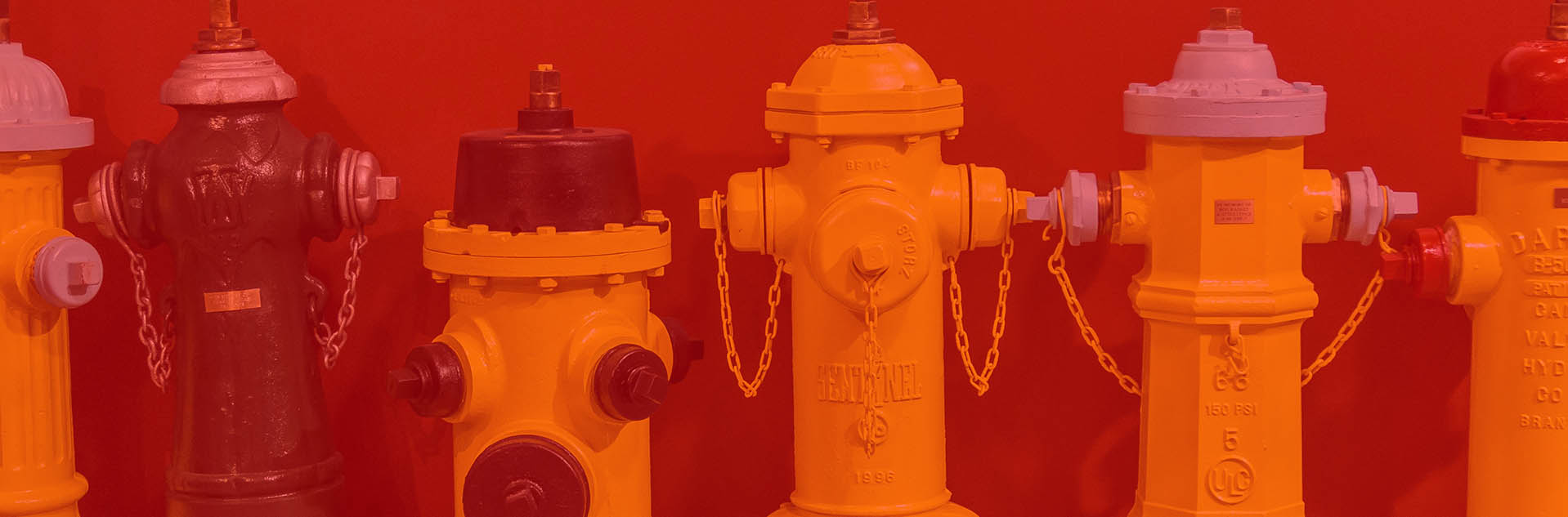 Canadian Fire Fighters Museum Fire Hydrants
